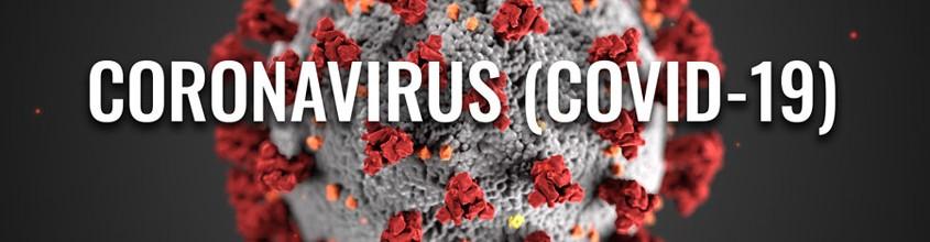Desinfección Coronavirus